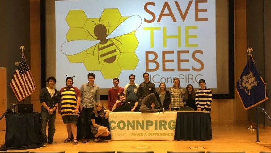 CT Uconn bees panel